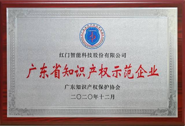 广东省知识产权示范企业.jpg